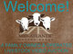 Welcome c14b03908f2a2fa63bac4e01d2ea36b8