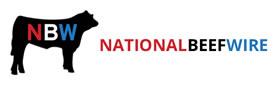 Nbw logo dva global
