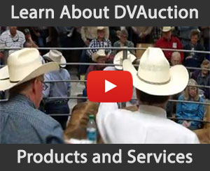 Learn about DVAuction's products and services!